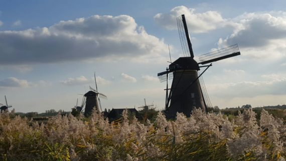 boj světrnými mlýny